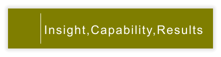 Insight,Capability,Results